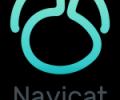 Navicat for SQLite (Linux) - the best GUI database administration tool Screenshot 0
