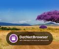 DotNetBrowser Screenshot 0